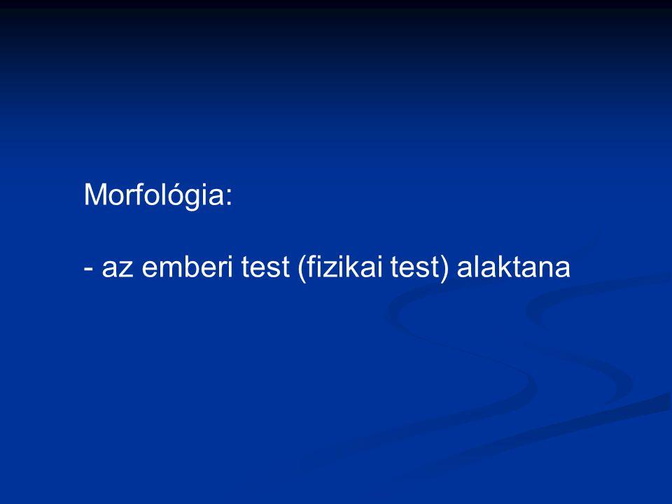 Morfológia: - az emberi test (fizikai test) alaktana