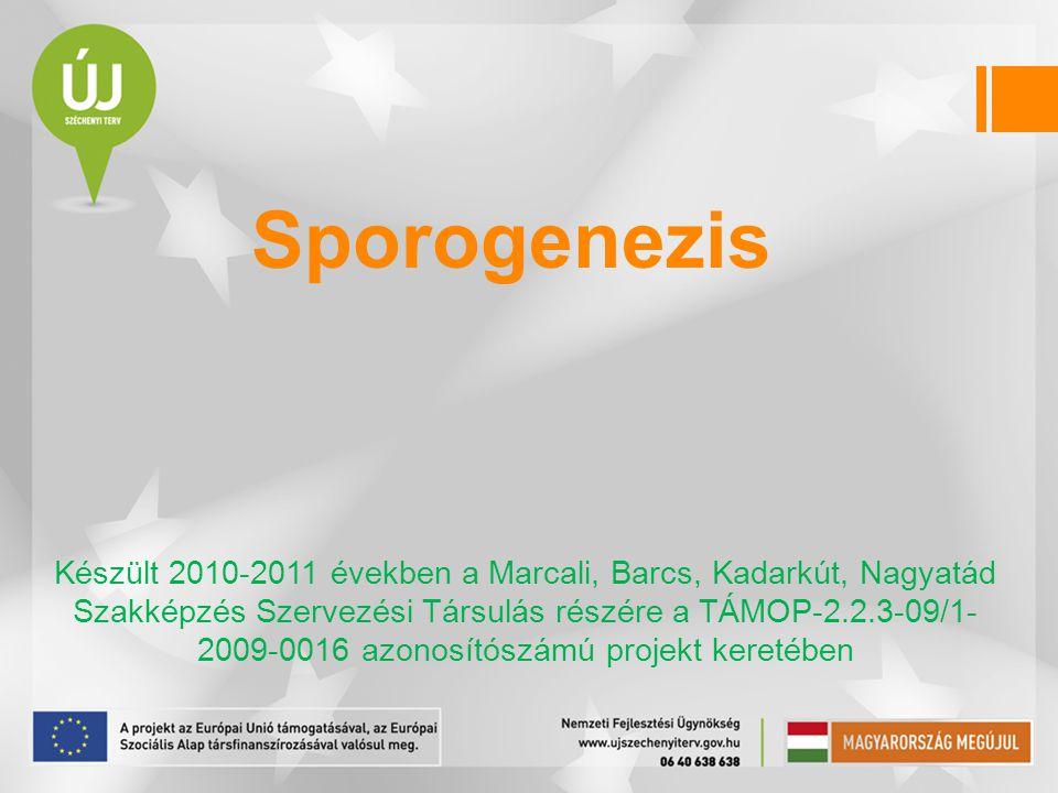 Sporogenezis
