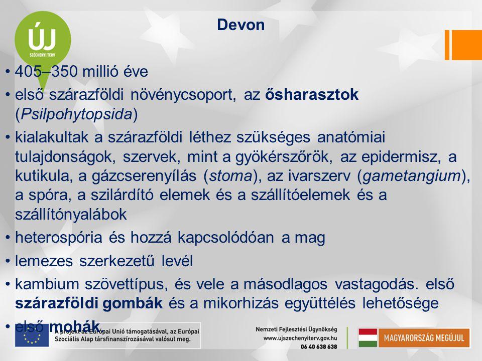 Devon 405–350 millió éve. első szárazföldi növénycsoport, az ősharasztok (Psilpohytopsida)