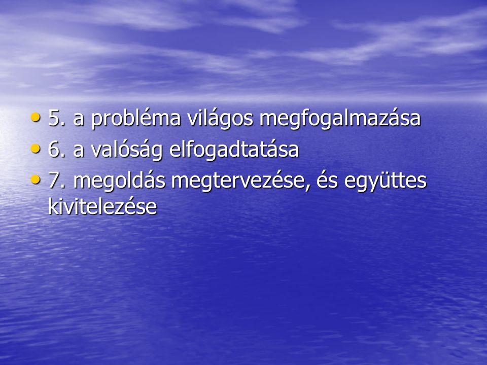 5. a probléma világos megfogalmazása