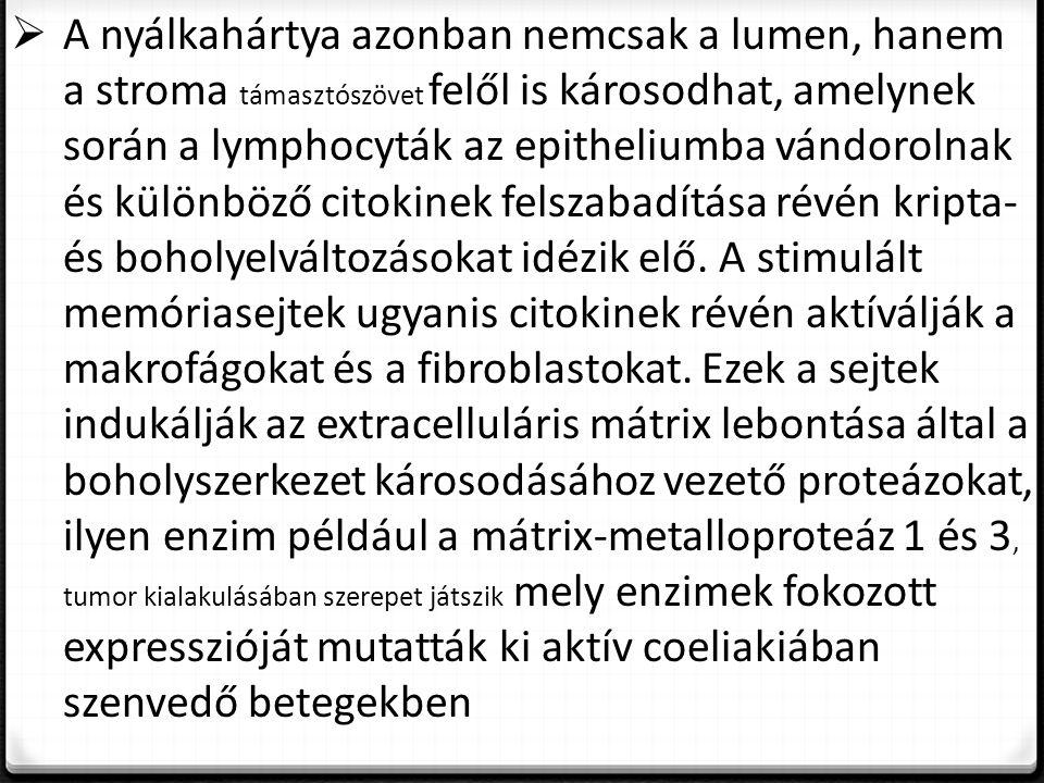 A nyálkahártya azonban nemcsak a lumen, hanem a stroma támasztószövet felől is károsodhat, amelynek során a lymphocyták az epitheliumba vándorolnak és különböző citokinek felszabadítása révén kripta- és boholyelváltozásokat idézik elő.