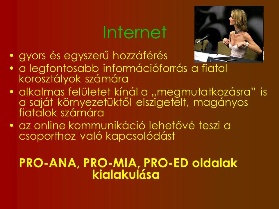 Internet gyors és egyszerű hozzáférés