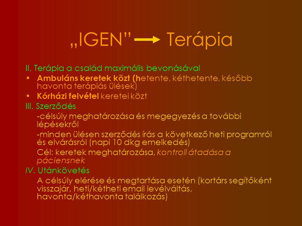 """""""IGEN Terápia II. Terápia a család maximális bevonásával"""