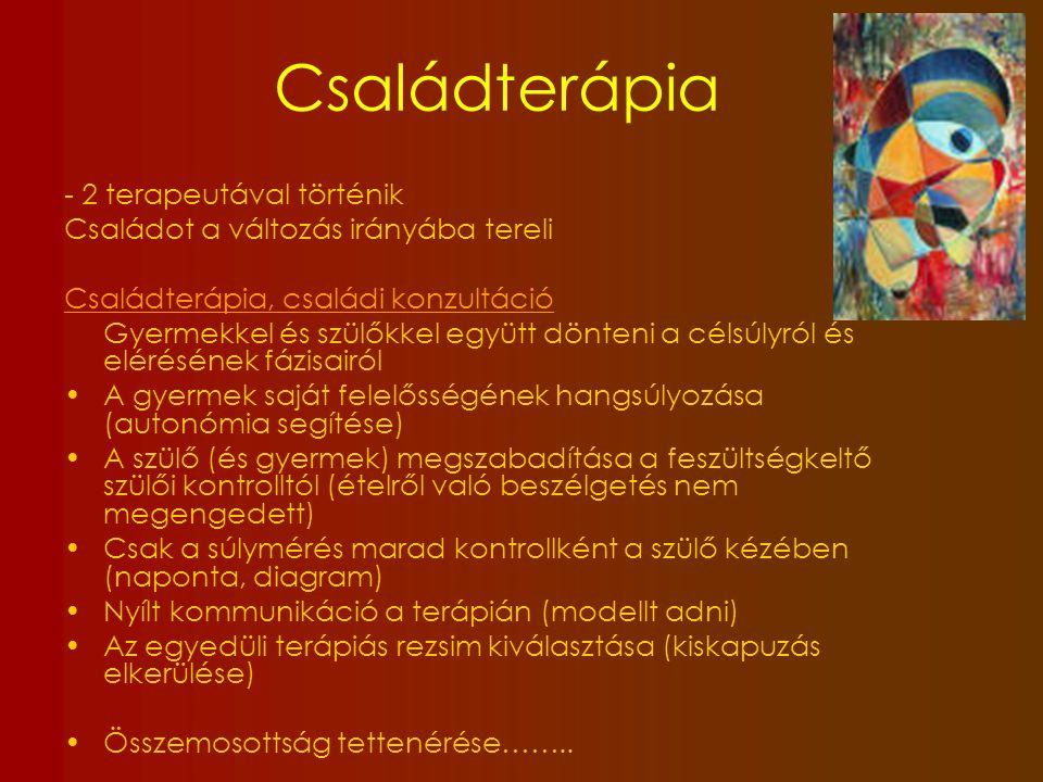 Családterápia - 2 terapeutával történik