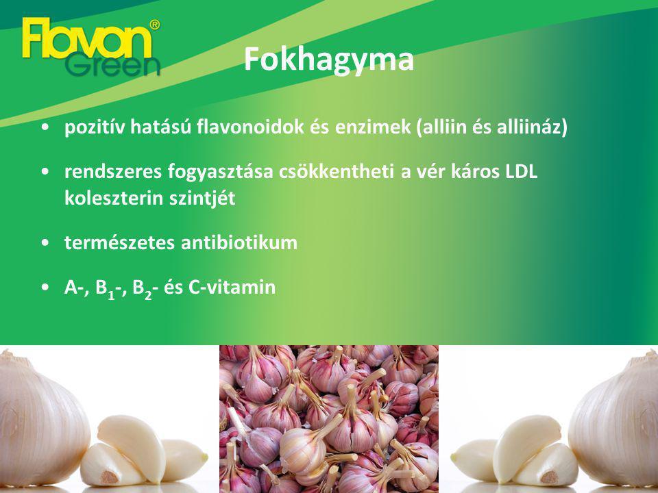 Fokhagyma pozitív hatású flavonoidok és enzimek (alliin és alliináz)