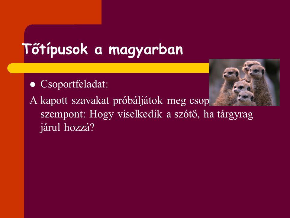 Tőtípusok a magyarban Csoportfeladat: