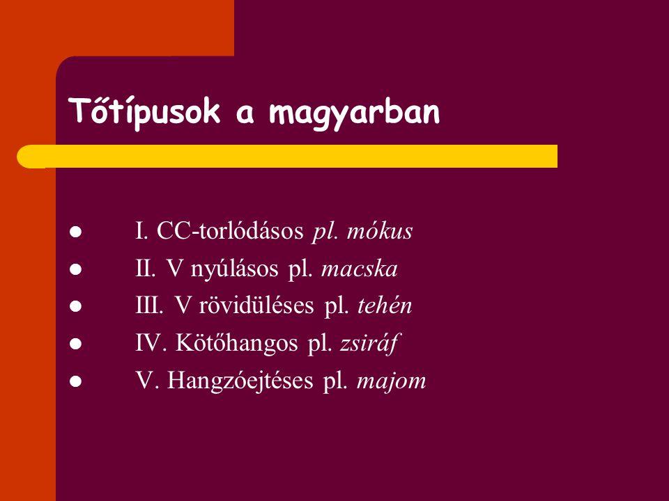 Tőtípusok a magyarban I. CC-torlódásos pl. mókus