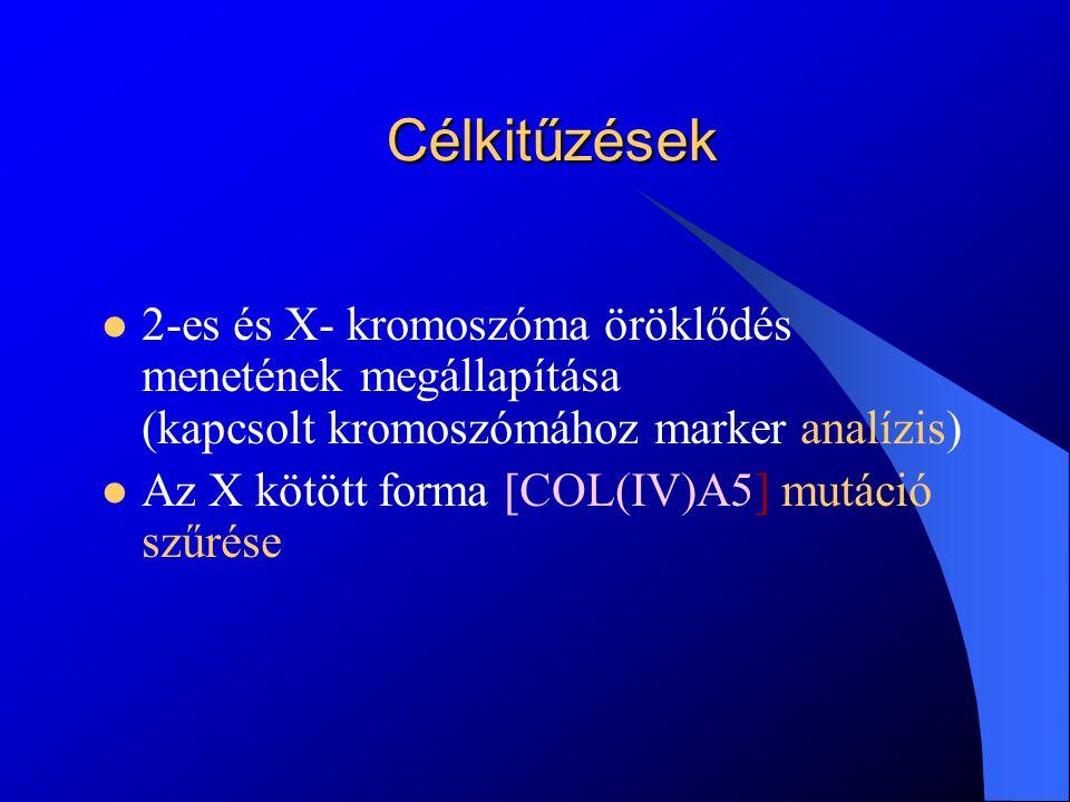 Célkitűzések 2-es és X- kromoszóma öröklődés menetének megállapítása (kapcsolt kromoszómához marker analízis)