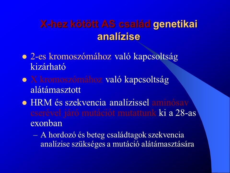 X-hez kötött AS család genetikai analízise