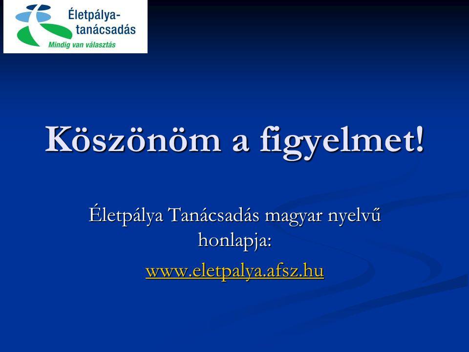 Életpálya Tanácsadás magyar nyelvű honlapja: www.eletpalya.afsz.hu