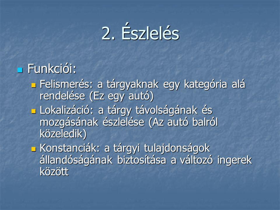 2. Észlelés Funkciói: Felismerés: a tárgyaknak egy kategória alá rendelése (Ez egy autó)