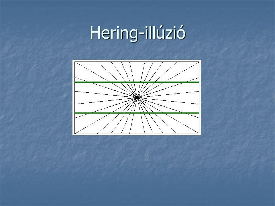 Hering-illúzió