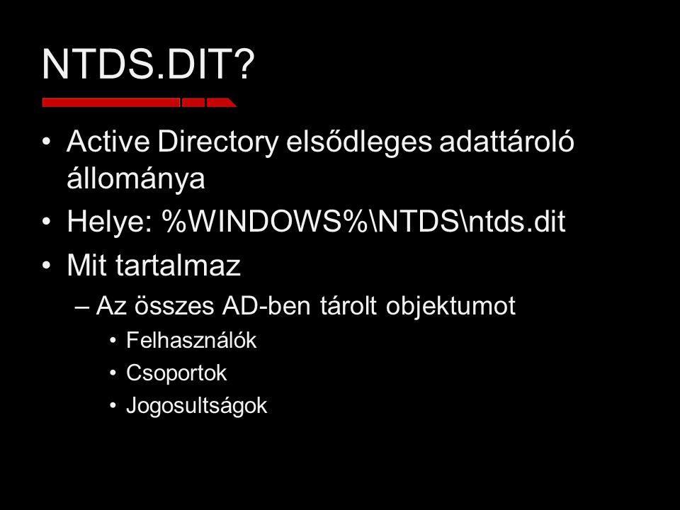 NTDS.DIT Active Directory elsődleges adattároló állománya
