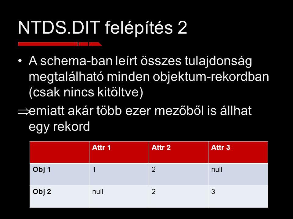 NTDS.DIT felépítés 2 A schema-ban leírt összes tulajdonság megtalálható minden objektum-rekordban (csak nincs kitöltve)