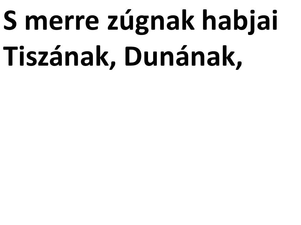 S merre zúgnak habjai Tiszának, Dunának,