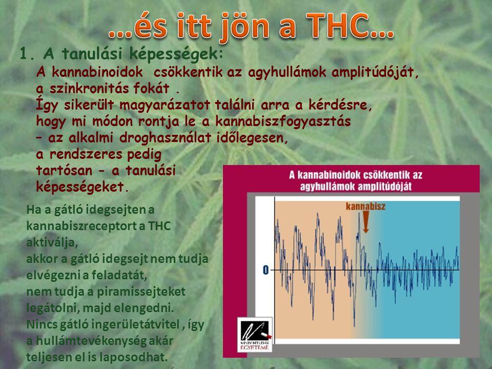 …és itt jön a THC… 1. A tanulási képességek: