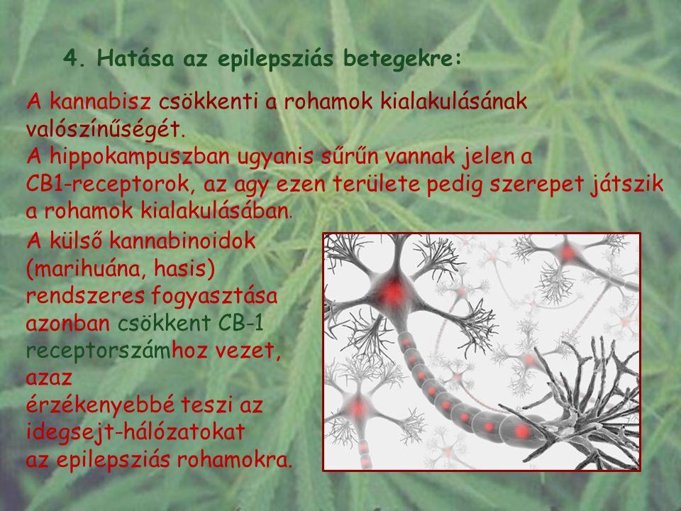 4. Hatása az epilepsziás betegekre: