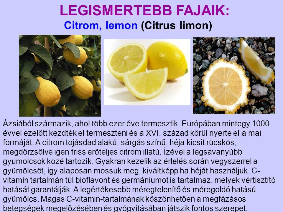 Citrom, lemon (Citrus limon)