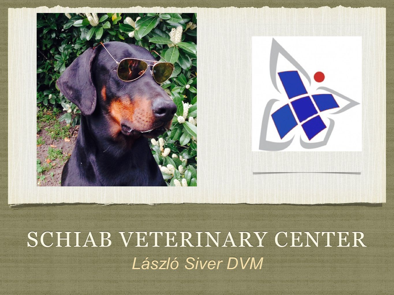 schiab veterinary center
