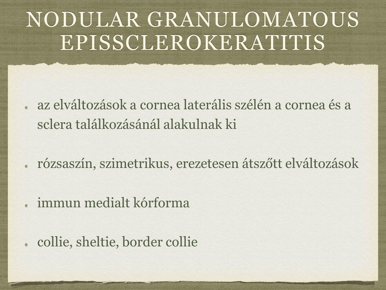 nodular granulomatous epissclerokeratitis