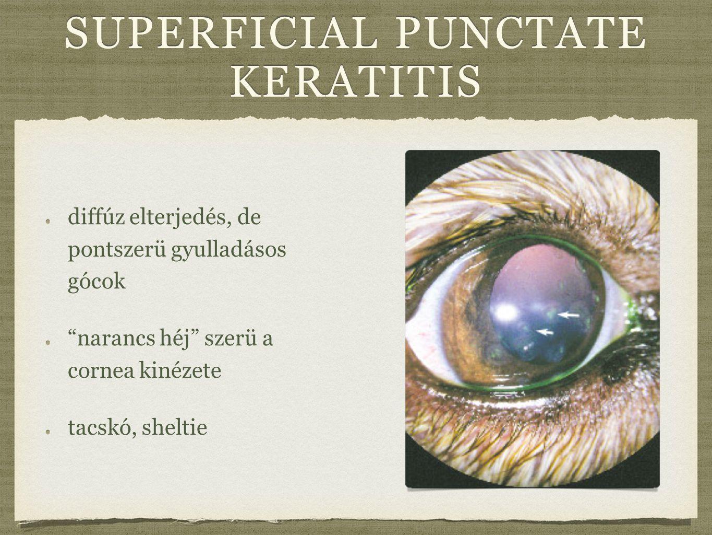 superficial punctate keratitis