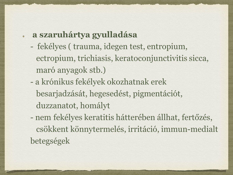 a szaruhártya gyulladása - fekélyes ( trauma, idegen test, entropium, ectropium, trichiasis, keratoconjunctivitis sicca, maró anyagok stb.) - a krónikus fekélyek okozhatnak erek besarjadzását, hegesedést, pigmentációt, duzzanatot, homályt - nem fekélyes keratitis hátterében állhat, fertőzés, csökkent könnytermelés, irritáció, immun-medialt betegségek