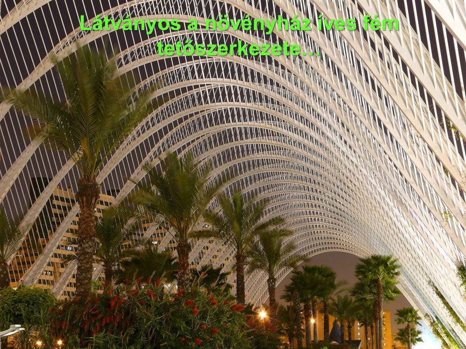 Látványos a növényház íves fém tetőszerkezete…
