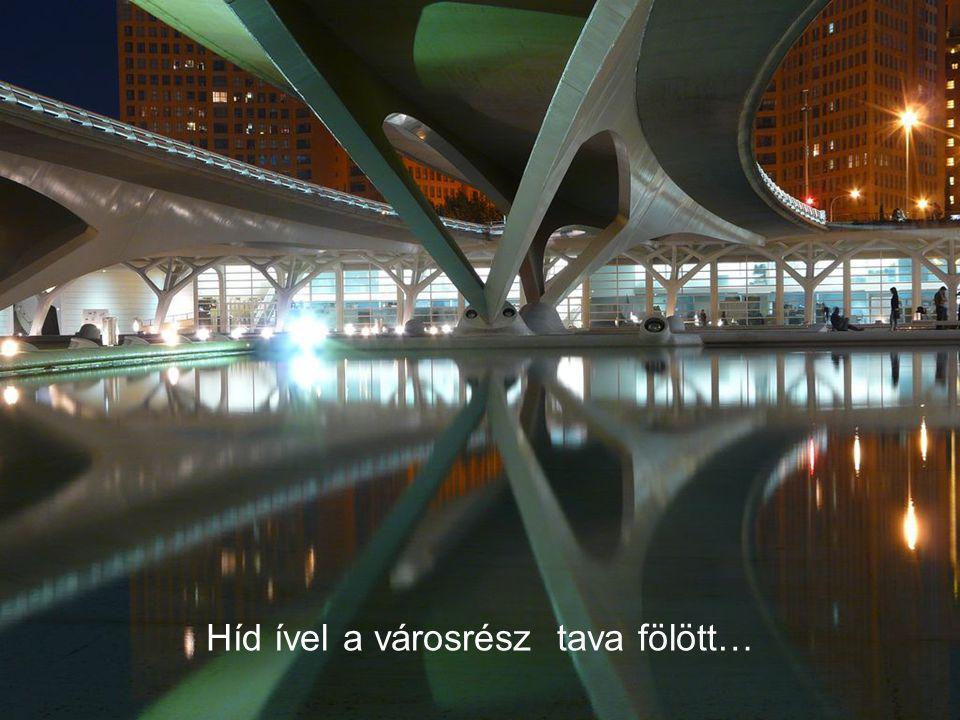 Híd ível a városrész tava fölött…