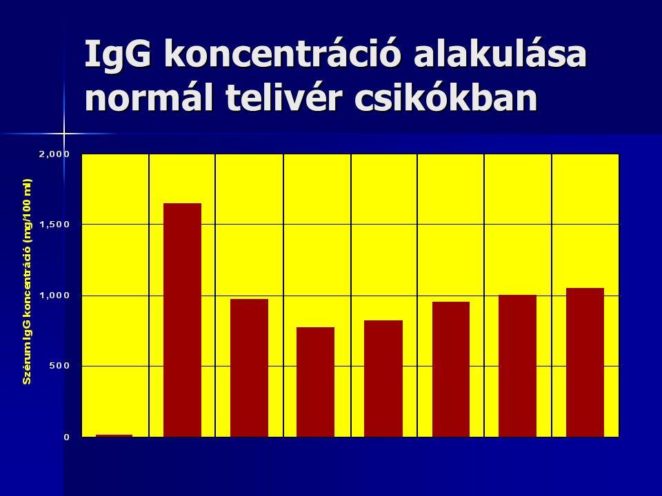 IgG koncentráció alakulása normál telivér csikókban