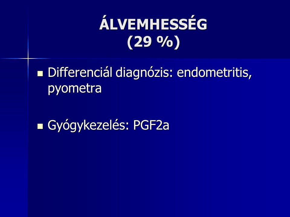 ÁLVEMHESSÉG (29 %) Differenciál diagnózis: endometritis, pyometra