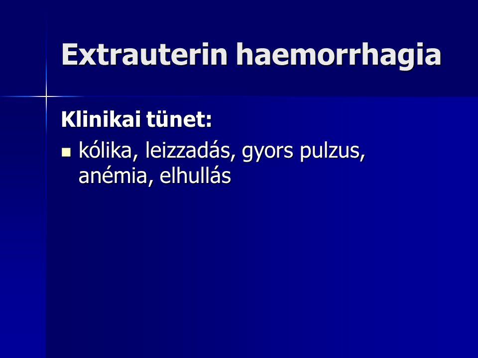 Extrauterin haemorrhagia
