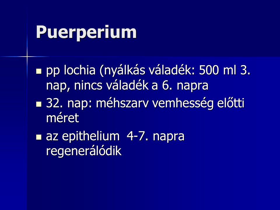 Puerperium pp lochia (nyálkás váladék: 500 ml 3. nap, nincs váladék a 6. napra. 32. nap: méhszarv vemhesség előtti méret.