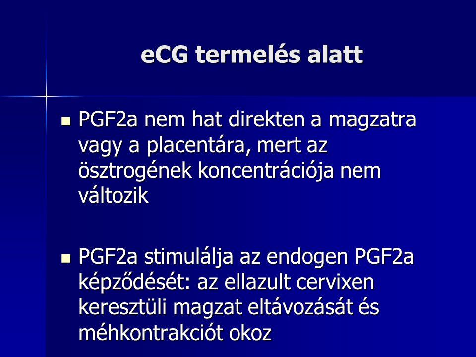 eCG termelés alatt PGF2a nem hat direkten a magzatra vagy a placentára, mert az ösztrogének koncentrációja nem változik.