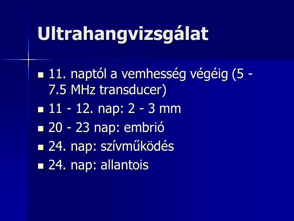 Ultrahangvizsgálat 11. naptól a vemhesség végéig (5 - 7.5 MHz transducer) 11 - 12. nap: 2 - 3 mm. 20 - 23 nap: embrió.