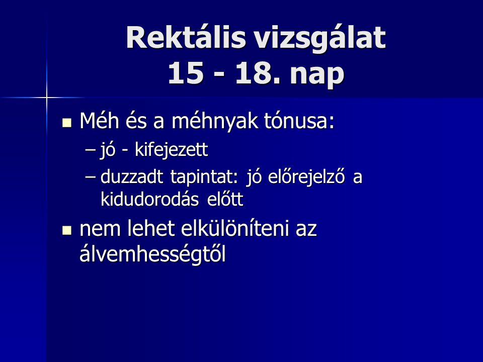 Rektális vizsgálat 15 - 18. nap