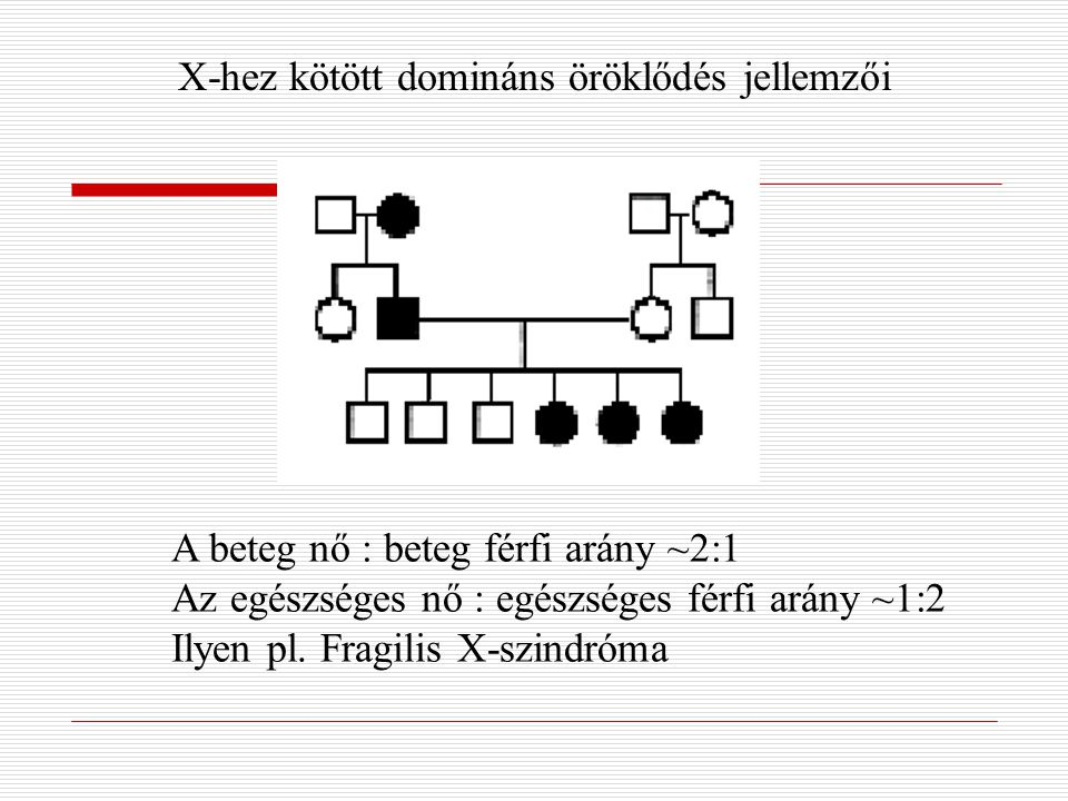 X-hez kötött domináns öröklődés jellemzői