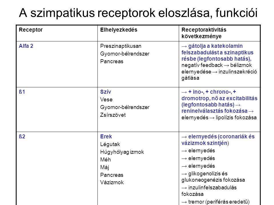A szimpatikus receptorok eloszlása, funkciói