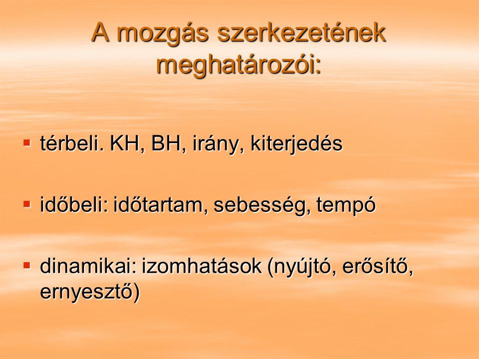 A mozgás szerkezetének meghatározói: