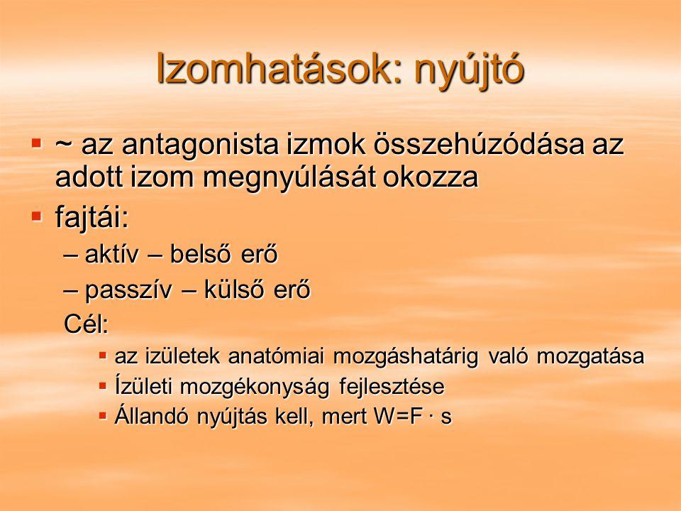 Izomhatások: nyújtó ~ az antagonista izmok összehúzódása az adott izom megnyúlását okozza. fajtái:
