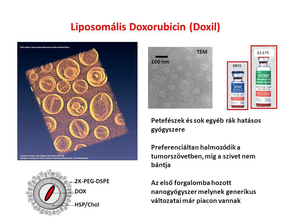Liposomális Doxorubicin (Doxil)