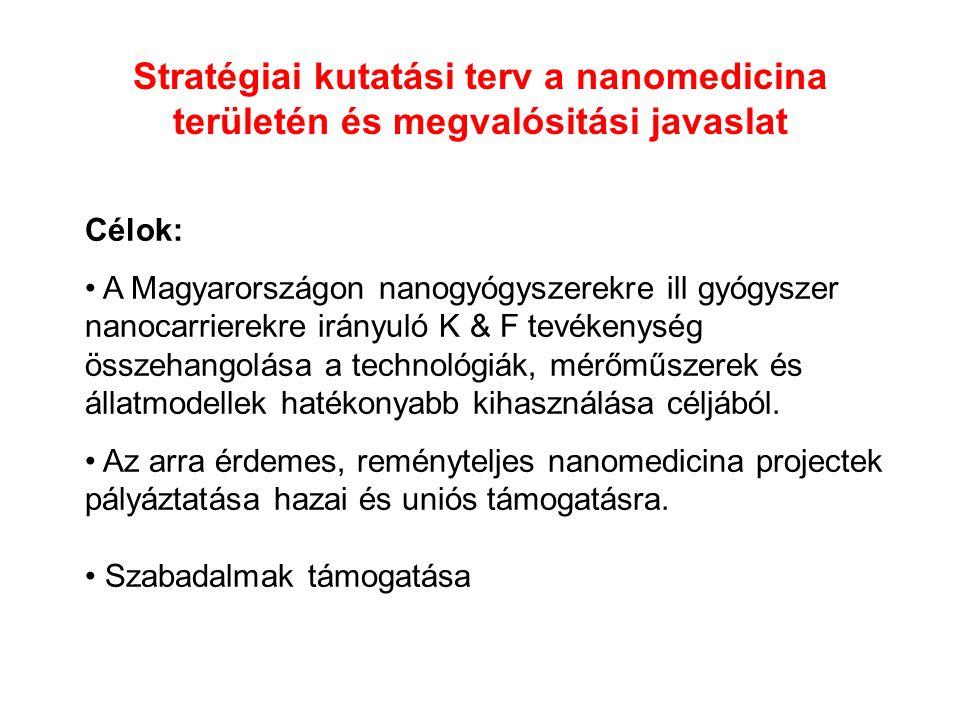 Stratégiai kutatási terv a nanomedicina területén és megvalósitási javaslat