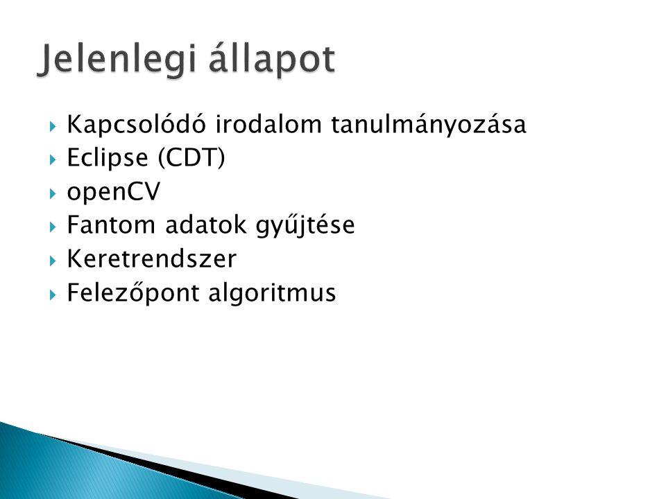 Jelenlegi állapot Kapcsolódó irodalom tanulmányozása Eclipse (CDT)
