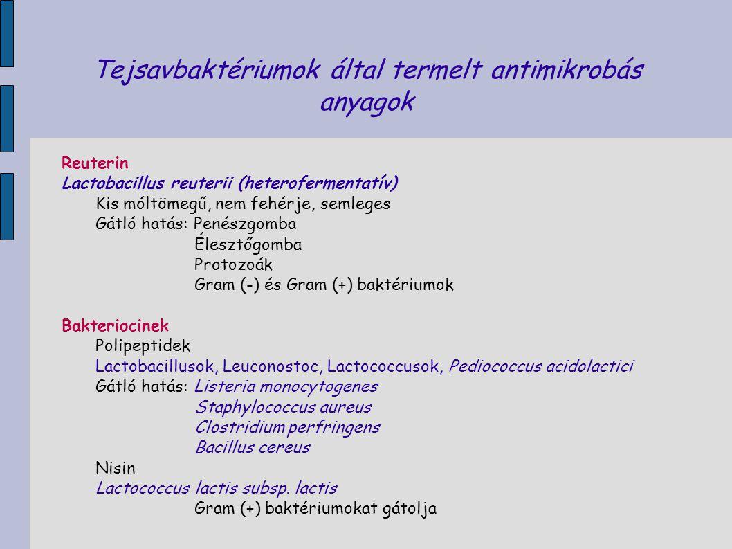 Tejsavbaktériumok által termelt antimikrobás anyagok