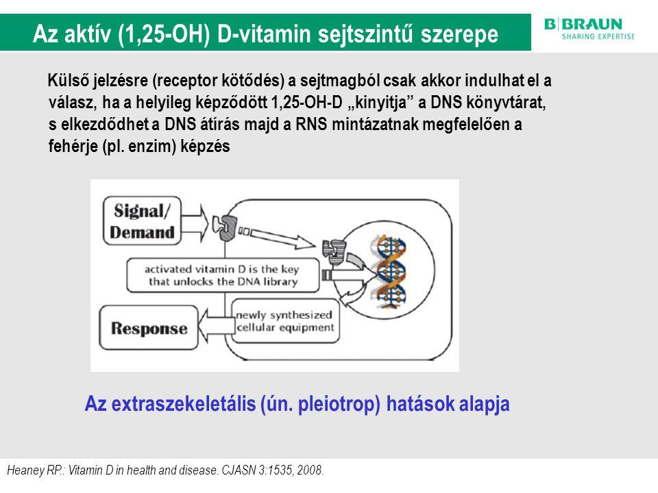 Az aktív (1,25-OH) D-vitamin sejtszintű szerepe
