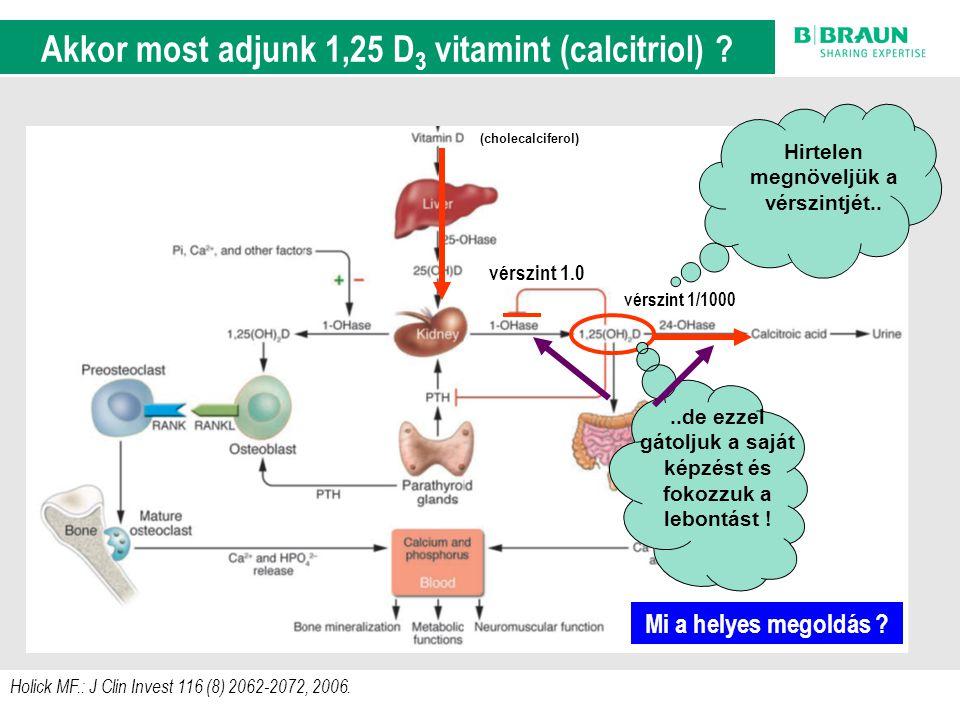 A D-vitamin anyagcsere szabályozási körei