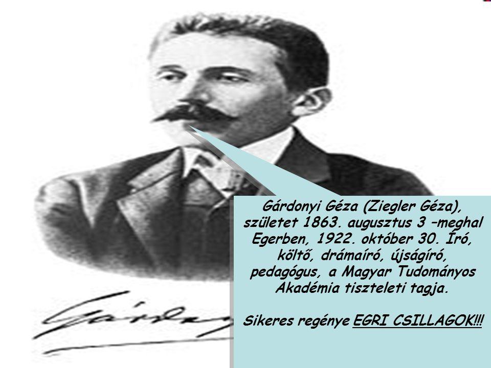 Sikeres regénye EGRI CSILLAGOK!!!