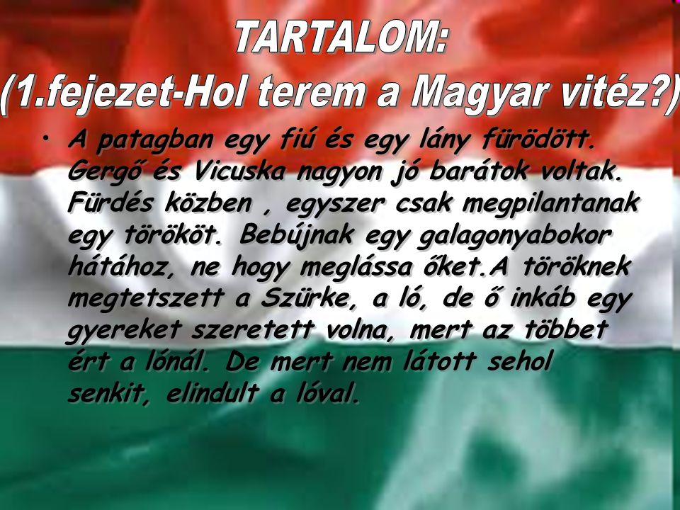 (1.fejezet-Hol terem a Magyar vitéz )