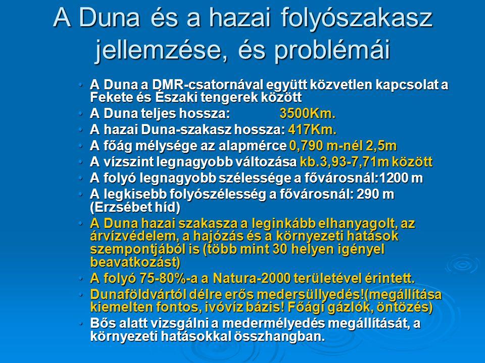 A Duna és a hazai folyószakasz jellemzése, és problémái