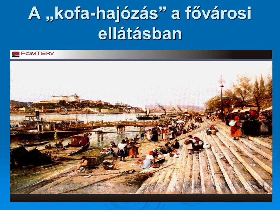 """A """"kofa-hajózás a fővárosi ellátásban"""