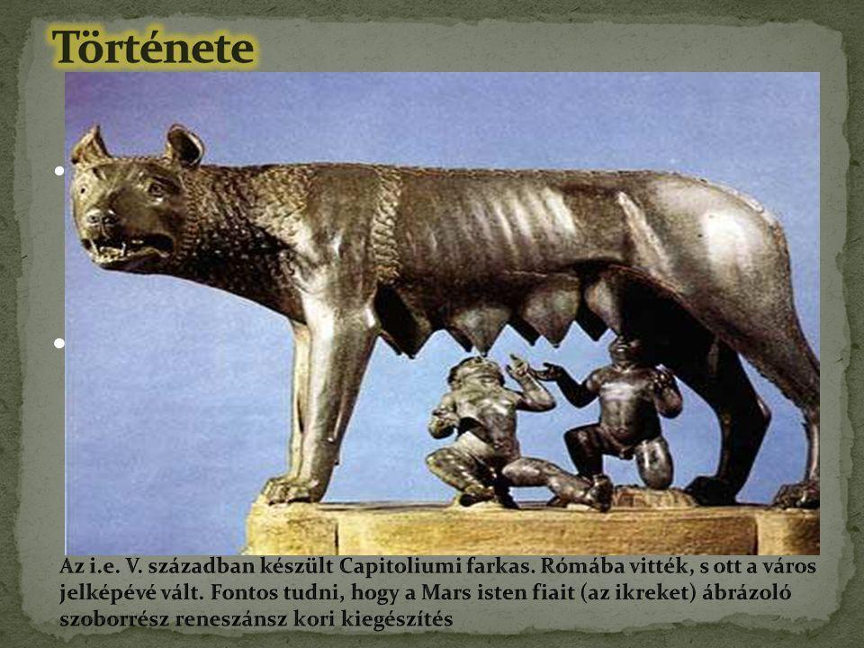Története hagyományok szerint: i. e. 753-ban Romulus és Remus alapította. Anyjuk a monda szerint Rhea Silvia Vesta-papnő, apjuk Mars isten.
